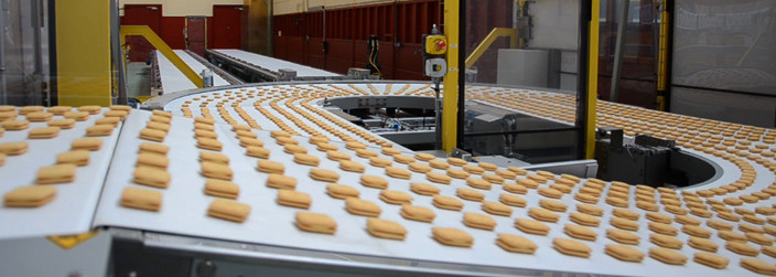 ASGCO Light Duty Conveyor Belting Biscuit on Conveyor